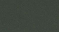 fern-green
